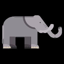 Elefantenohr Elfenbein Rumpf flach abgerundet geometrisch