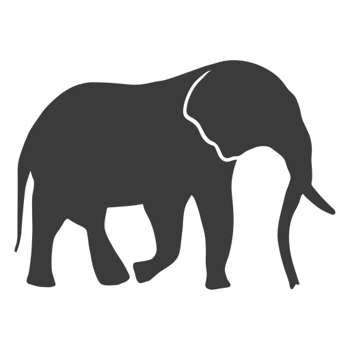 Elephant ear ivory trunk tail silhouette Transparent PNG