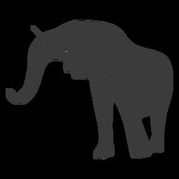 Silueta de tronco de oreja de elefante