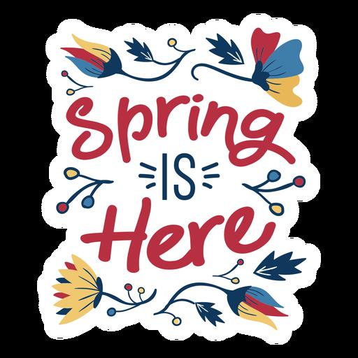 Flor, primavera, é, aqui, pétala, caule, folha plana, apartamento Transparent PNG