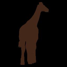 Jirafa cuello alto largo ossicones silueta animal.