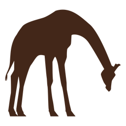 Langes ossicones Schattenbild der Giraffe hohen Halses
