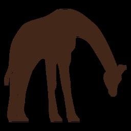 Silhueta de ossicones longos de pescoço alto girafa