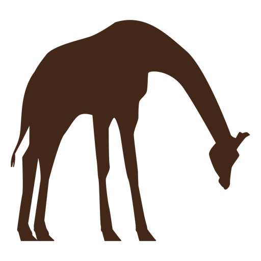 Giraffe tall neck long ossicones silhouette Transparent PNG