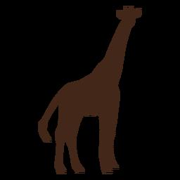 Silhueta de cauda de ossicones longos de pescoço alto girafa