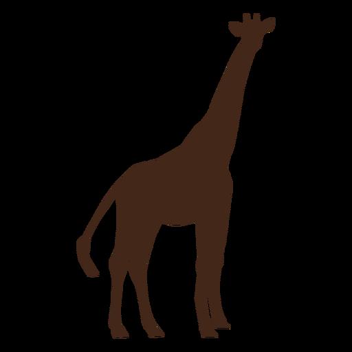 Silhueta de cauda de ossicones longos de pescoço alto girafa Transparent PNG