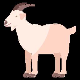 Flaches Tier des Ziegenhufhorn-Schwanzes