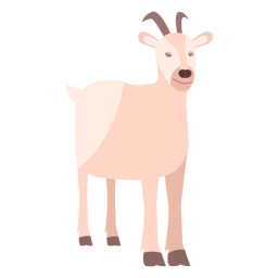 Chifre de chifre de chifre de cabra plana