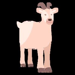 Goat hoof tail horn flat