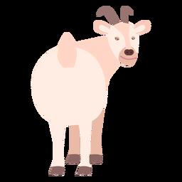Flaches Tier des Ziegenschwanzhufhorns