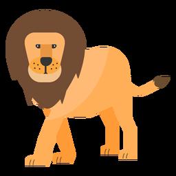 León rey cola melena plana