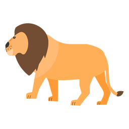 Lion mane king tail flat