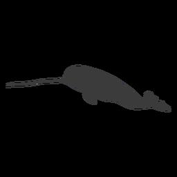 Silueta de cola de aleta de colmillo de narval