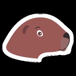 Etiqueta principal do focinho principal da lontra