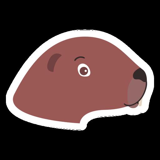 Otter head muzzle flat sticker Transparent PNG