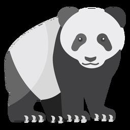 Panda-Fleckfettmündung flach