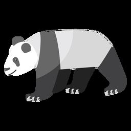 Panda punto hocico gordo plano
