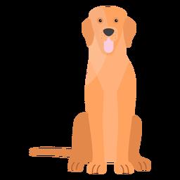 Cola de perro cachorro oreja plana