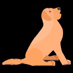 Cachorro perro lengua cola oreja plana