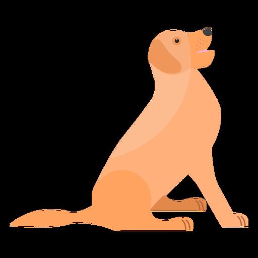 Orelha de cauda de língua cachorro filhote de cachorro Transparent PNG