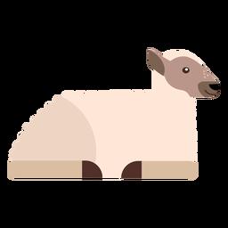 Lã ovinos casco lã plana arredondado geométrica