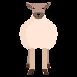Oveja oveja cordero lana plana redondeada geométrica
