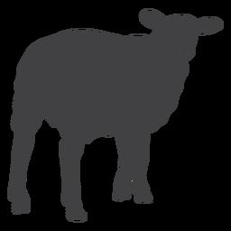 Oveja cordero lana silueta de pezuña