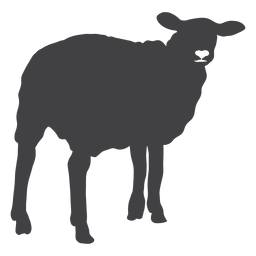 Sheep lamb wool hoof silhouette