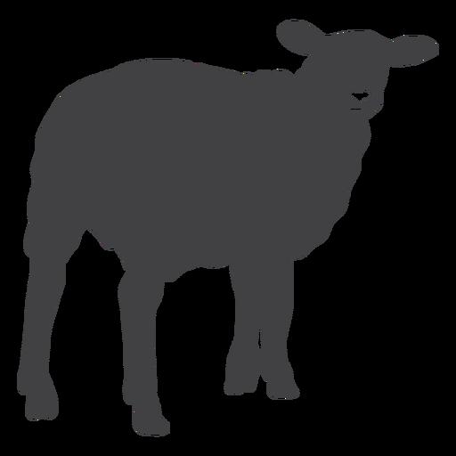 Silueta de pezuña de lana de cordero de oveja