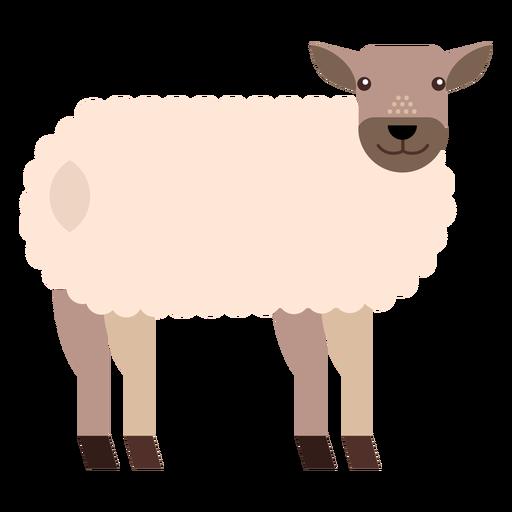 Sheep lamb wool hoof tail flat rounded geometric Transparent PNG