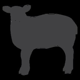 Silhueta de casco de ovelha lã ovelha