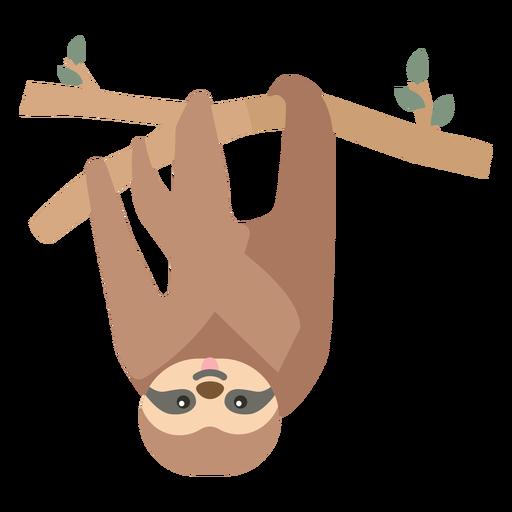 Sloth branch tree leaf flat Transparent PNG