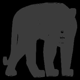 Silueta de piel de raya tigre