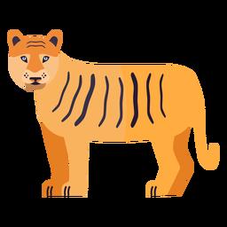 Raya cola de tigre plana