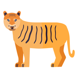 Tigerstreifen Schwanz flach