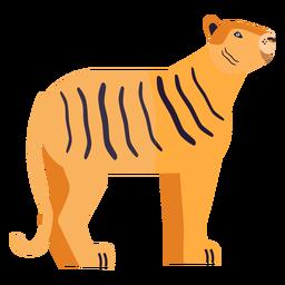 Listra cauda de tigre plana