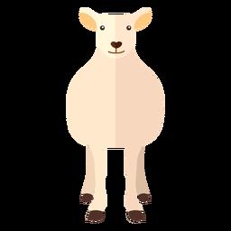 Casco de lã ovelha cordeiro plana