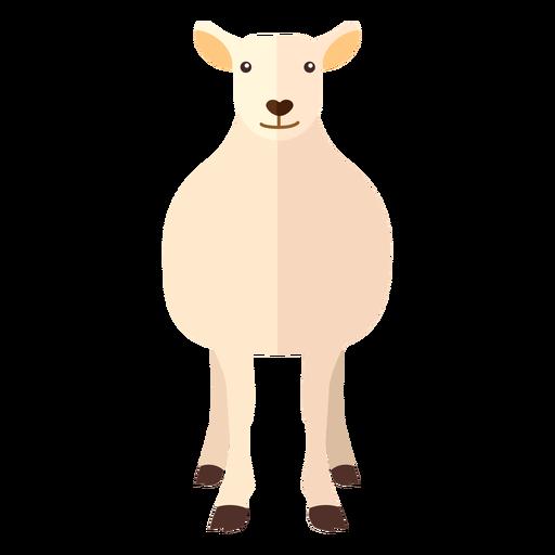 Pezuña de cordero de oveja de lana plana