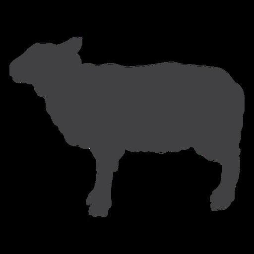 Wool sheep lamb hoof silhouette Transparent PNG