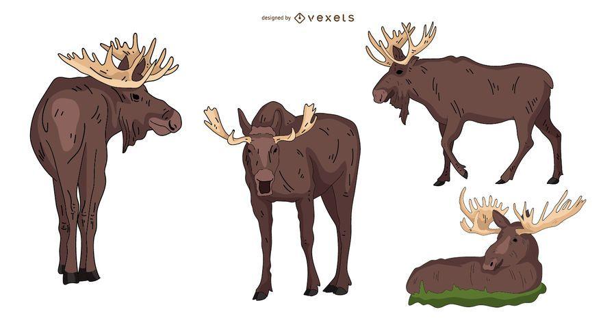 Moose Colored Illustration Set
