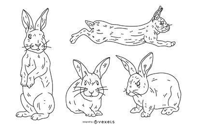 Conjunto de estilo de trazo de conejo