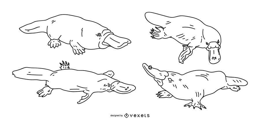 Juego de trazo de Platypus