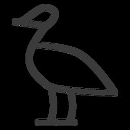 Cuerpo del ave pato pico pico trazo