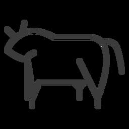 Touro vaca bovina isis gordo acidente vascular cerebral