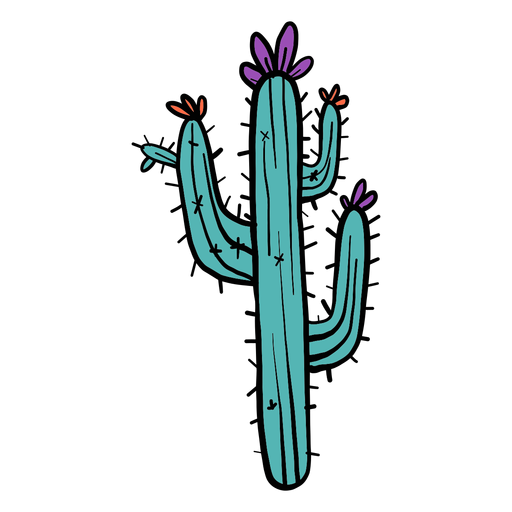 Esboço de cor de cor de espinho flor cacto Transparent PNG