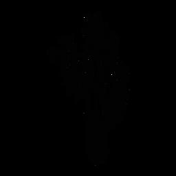 Esboço de espinho de flor de cacto