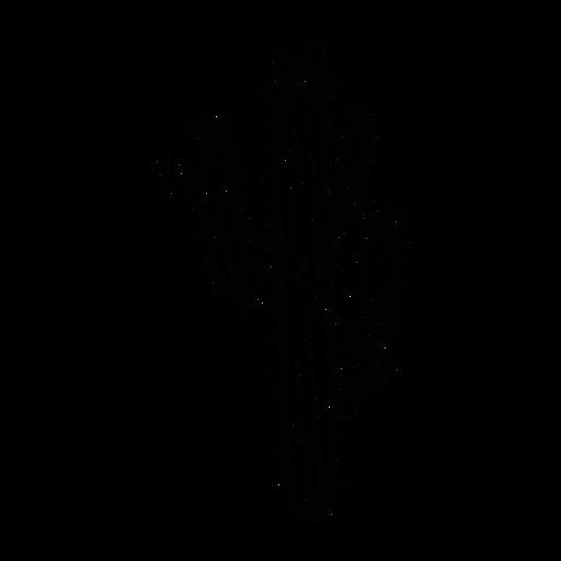 Cactus flower thorn sketch Transparent PNG