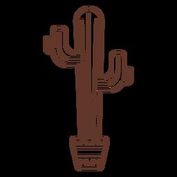 Pote de cactus