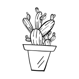 Bosquejo de cactus olla espina