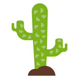 Kaktus-Dorn flach